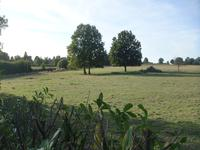 French property for sale in VERGONNES, Maine et Loire - €199,895 - photo 10