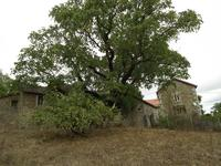 French property for sale in AUZANCES, Creuse - €90,000 - photo 6