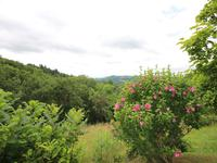 French property for sale in ESPEYRAC, Aveyron - €283,550 - photo 6