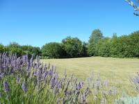 French property for sale in LA CAILLERE ST HILAIRE, Vendee - €899,940 - photo 4