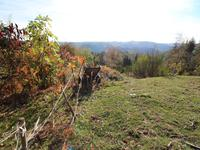 French property for sale in ENTRAYGUES SUR TRUYERE, Aveyron - €82,500 - photo 6
