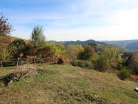 French property for sale in ENTRAYGUES SUR TRUYERE, Aveyron - €82,500 - photo 9