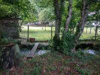 French property for sale in MONCEAUX SUR DORDOGNE, Correze - €131,890 - photo 2