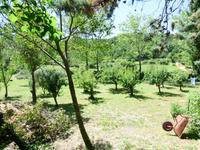 French property for sale in ST PAUL LE JEUNE, Ardeche - €297,000 - photo 9