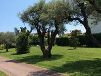 French property for sale in ANTIBES, Alpes Maritimes - €333,000 - photo 10