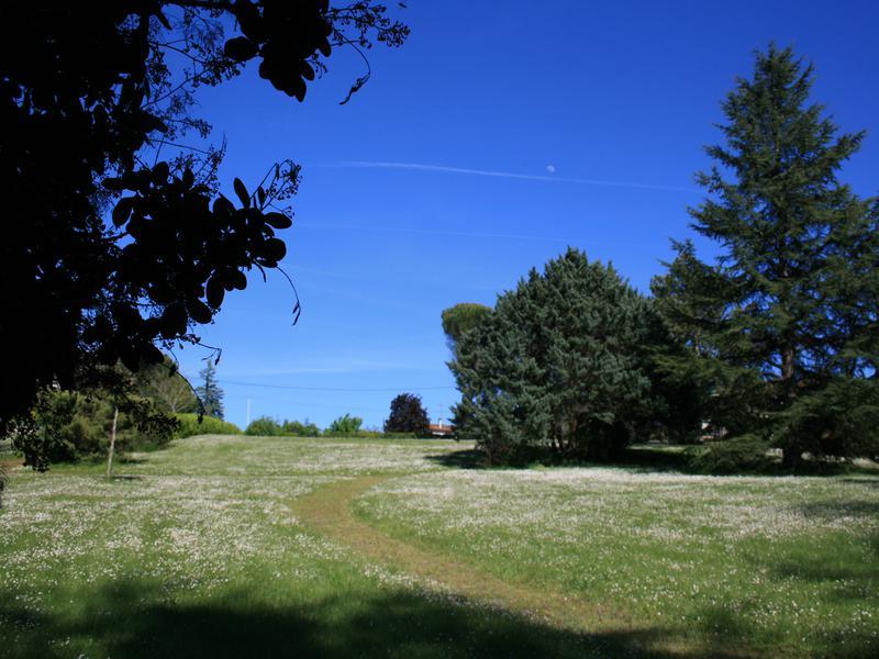 Terrain à vendre à MONTBRON(16220) - Charente