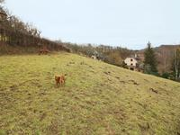 French property for sale in MURET LE CHATEAU, Aveyron - €80,553 - photo 4