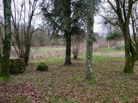 French property for sale in Lonlay l Abbaye, Orne - €28,000 - photo 9