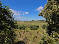 French property for sale in STE VALIERE, Aude - €246,100 - photo 10