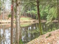 French property for sale in ST JORY DE CHALAIS, Dordogne - €13,000 - photo 6