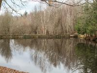 French property for sale in ST JORY DE CHALAIS, Dordogne - €13,000 - photo 2