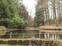 French property for sale in ST JORY DE CHALAIS, Dordogne - €13,000 - photo 4