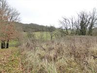 French property for sale in BEYNAC ET CAZENAC, Dordogne - €61,000 - photo 3