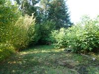 French property for sale in LES SALLES LAVAUGUYON, Haute Vienne - €16,000 - photo 5
