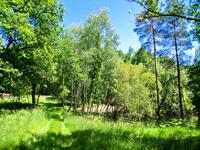 French property for sale in MIALET, Dordogne - €77,000 - photo 5