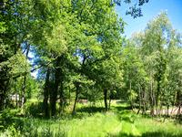 French property for sale in MIALET, Dordogne - €77,000 - photo 9