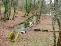 French property for sale in MIALET, Dordogne - €77,000 - photo 10