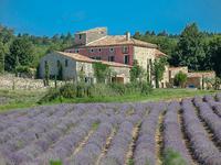 Maison à vendre à REILLANNE en Alpes de Hautes Provence - photo 1