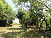 French property for sale in LAVARDAC, Lot et Garonne - €165,000 - photo 10