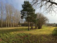 French property for sale in AVOINE, Indre et Loire - €224,700 - photo 4