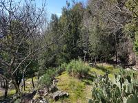 French property for sale in ST MARTIN DE L ARCON, Herault - €125,000 - photo 3