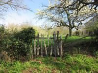 French property for sale in SOMMIERES DU CLAIN, Vienne - €23,500 - photo 4