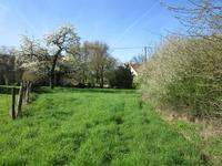 French property for sale in SOMMIERES DU CLAIN, Vienne - €23,500 - photo 6