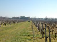 French property for sale in , Gironde - €1,207,500 - photo 9