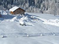 Terrain à vendre à PEISEY NANCROIX en Savoie - photo 1