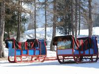 Terrain à vendre à PEISEY NANCROIX en Savoie - photo 8