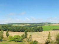French property for sale in PINEL HAUTERIVE, Lot et Garonne - €530,000 - photo 4