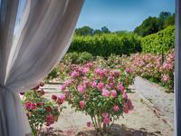 French property for sale in PERIGORD NOIR, Dordogne - €0 - photo 7