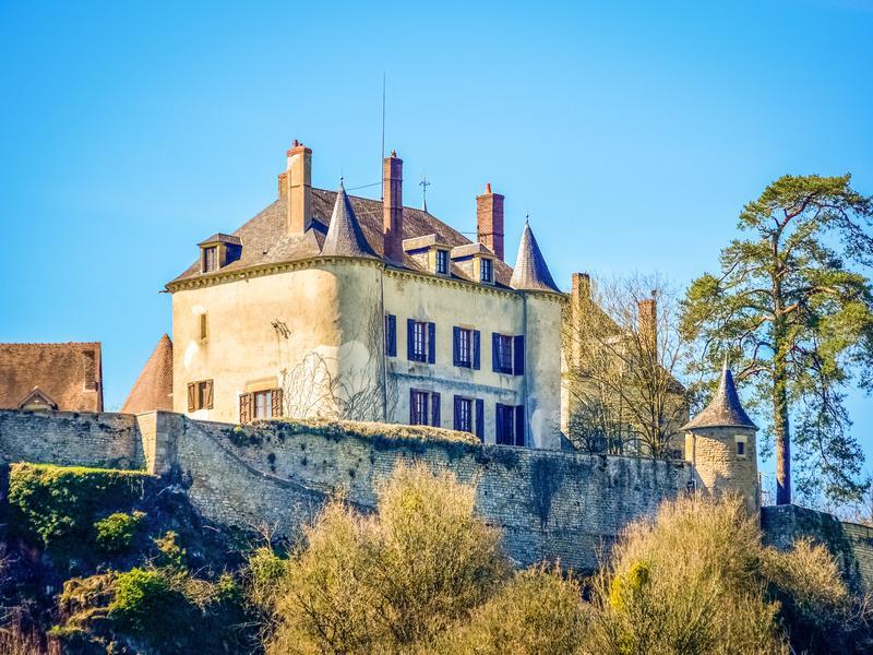 Chateau à vendre à CLAMECY(58500) - Nievre