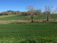 French property for sale in CHALAIS, Charente - €21,000 - photo 4