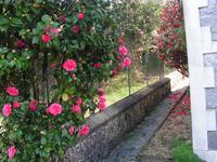 French property for sale in CORNIL, Correze - €93,500 - photo 4