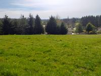 French property, houses and homes for sale inST CYRHaute_Vienne Limousin
