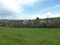French property for sale in DOMME, Dordogne - €66,000 - photo 9