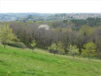 French property for sale in DOMME, Dordogne - €82,500 - photo 4