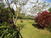 French property for sale in BON REPOS SUR BLAVET, Cotes d Armor - €82,000 - photo 10