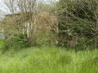 French property for sale in BELLAC, Haute Vienne - €15,000 - photo 5