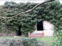 French property for sale in BELLAC, Haute Vienne - €15,000 - photo 2