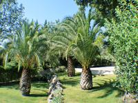 French property for sale in DRAGUIGNAN, Var - €699,000 - photo 6