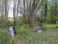 French property for sale in ST PIERRE DE FRUGIE, Dordogne - €138,000 - photo 10