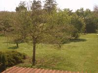 French property for sale in VENTOUSE, Charente - €136,250 - photo 10