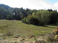 French property for sale in CHAUMONT LE BOURG, Puy de Dome - €189,000 - photo 2
