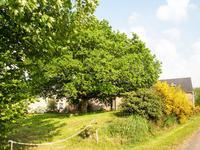 Maison à vendre à LANGOLEN en Finistere - photo 2
