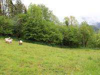 French property for sale in SEVIGNACQ MEYRACQ, Pyrenees Atlantiques - €93,250 - photo 1