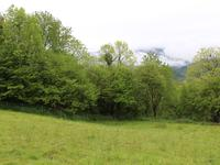 French property for sale in SEVIGNACQ MEYRACQ, Pyrenees Atlantiques - €93,250 - photo 6