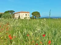 commerce à vendre à Salleles d Aude, Aude, Languedoc_Roussillon, avec Leggett Immobilier