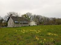 French property for sale in ST BARBANT, Haute Vienne - €29,500 - photo 3
